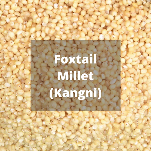 Foxtail Millet / Kangni