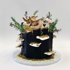 Wrens Tree Stump.JPG