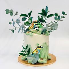 Bee Eater Birds.JPG