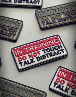 patch-in-training