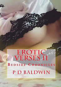 BookCoverPreview EV2 - Copy (2).jpg