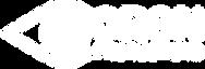 oron logo.png
