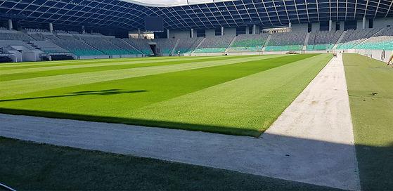 Natural grass football field-Stozice Lju