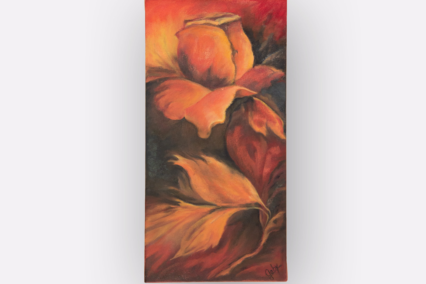 Rosas de otoño  |  Autumm roses