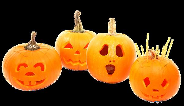 autumn-19240_pumpkins_wb.png