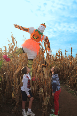 IMG_1079-orange-scarecrow
