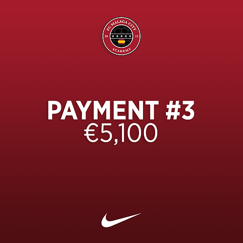 Payment #3: €5,100
