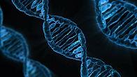 DNA ziekte.jpg