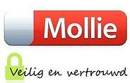 mollie-logo.jpg