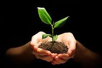 Hands-holding-plant-in-soil-on-28160849-900x602.jpg