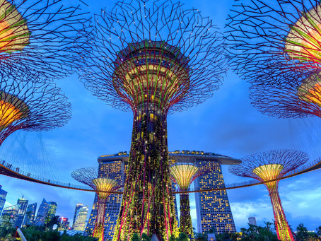 Why Circular Smart Cities are the Future