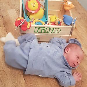 Nino Finn
