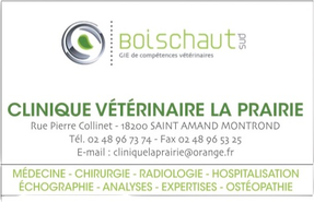 Logo Veto clinique .png