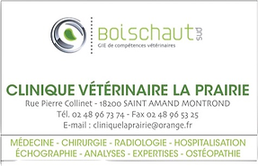 Logo Veto clinique .png