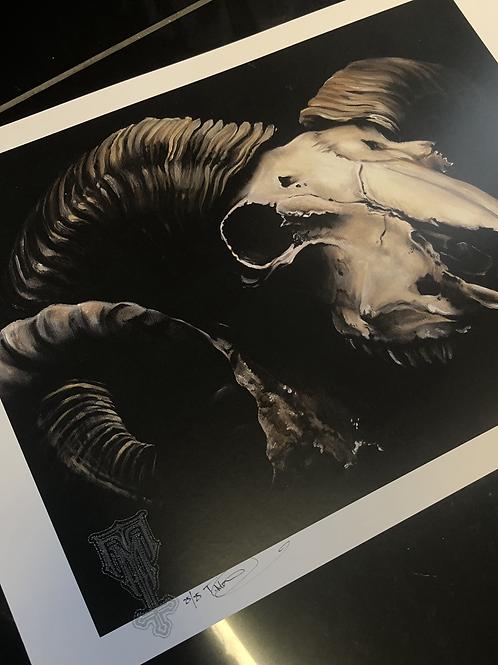Ram Skull Print.
