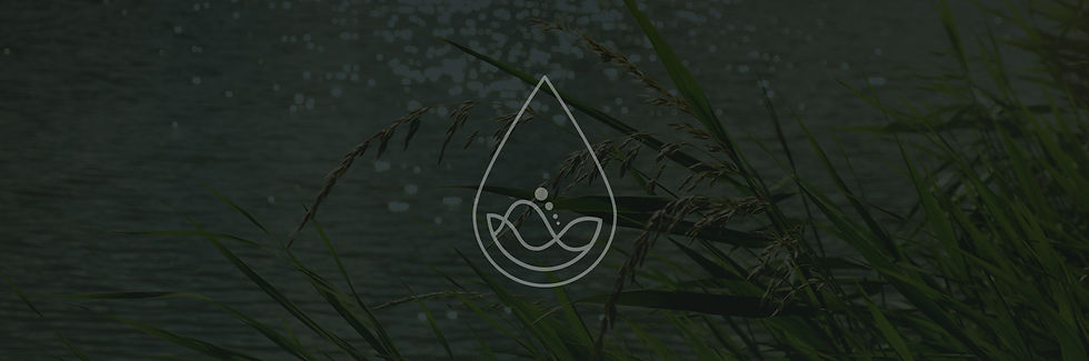 inlandwaters-strip-4.jpg