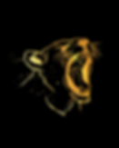 OFFICIAL LOGO LIONESS HEAD PNG_edited.pn