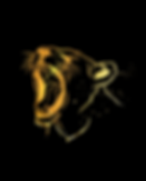 OFFICIAL LOGO LIONESS HEAD PNG.png