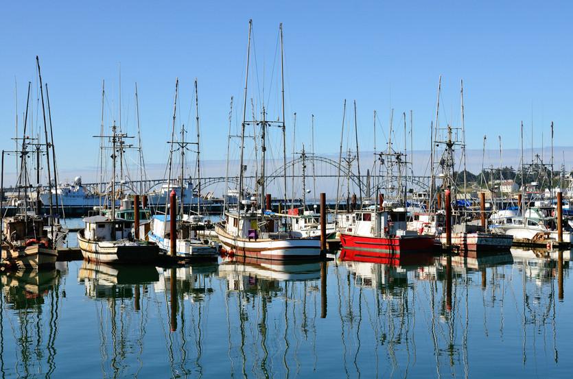 Canada Reaches 5% Marine Conservation Milestone