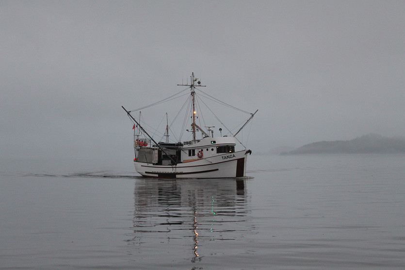 Canadian Wild Pacific Halibut Commercial Fishery is World Class in Monitoring and Management