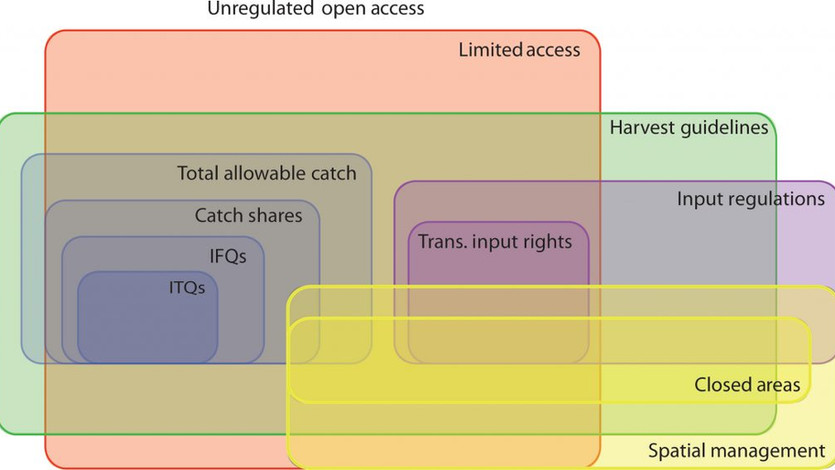 How Commercial Fisheries are Managed