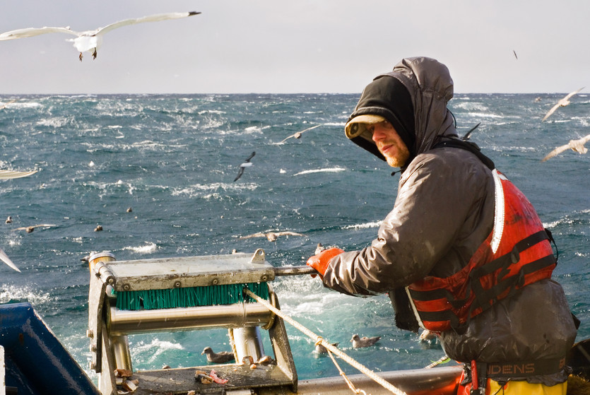 DNA Testing Reveals Virtually No Seafood Fraud in Canada