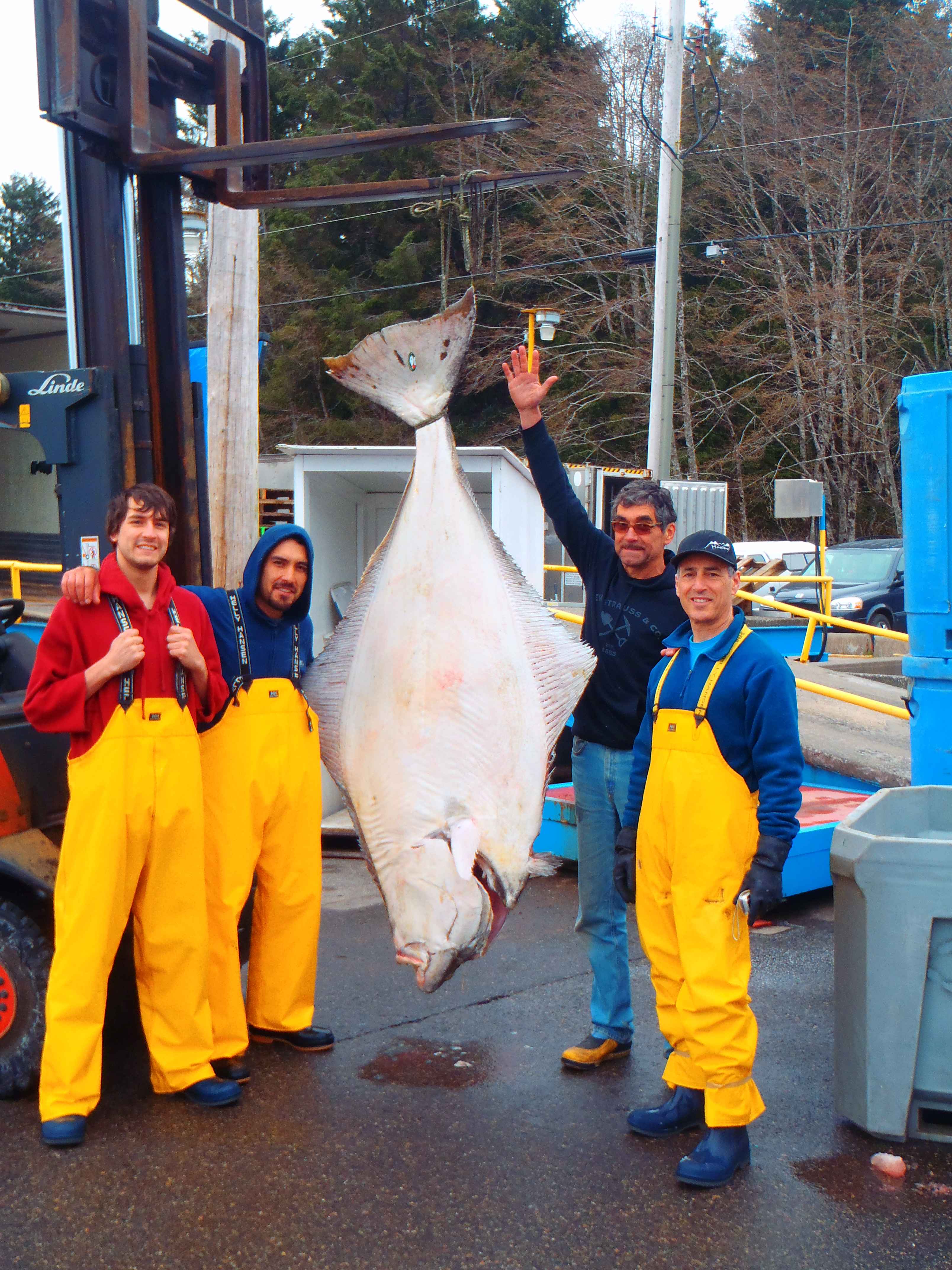 Crew with a Big Halibut