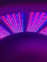 LED Collageen licht