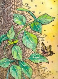 Kaua'i Butterfly