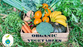 Hello! We are True Blue Organics