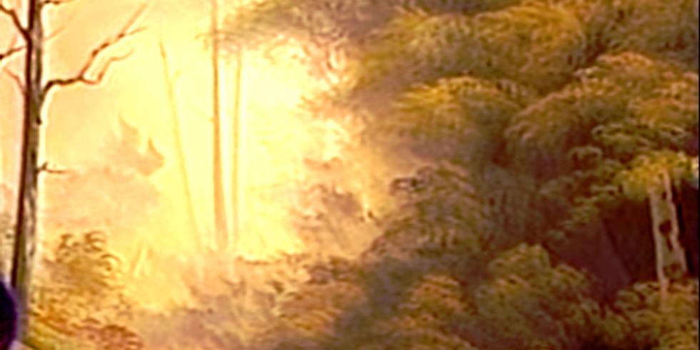 Golden Morning Mist - Sterling CO
