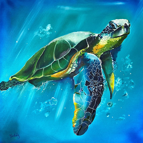 Turtle, a  painting done by Artist Hope Blakely 24 X 24