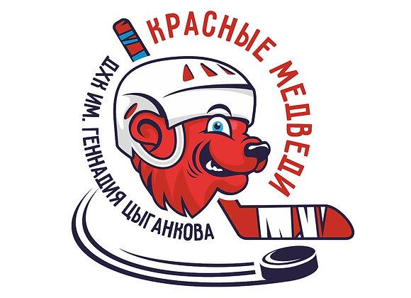 Детский хоккейный клуб Красные медведи