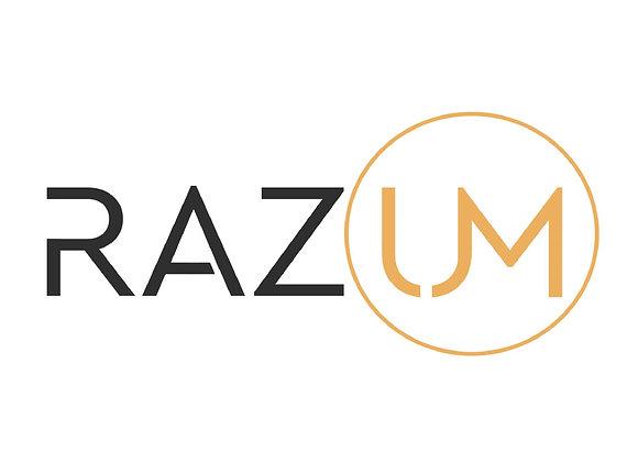 Учебный центр RAZUM