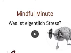 Was ist eigentlich STRESS?