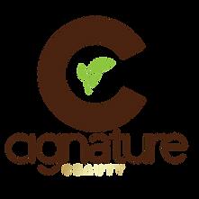Official Cignature Beauty Logo Enhanced