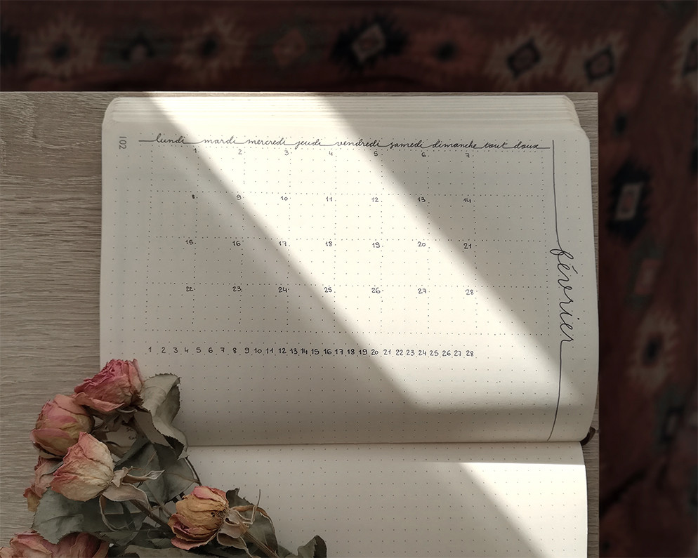 """Un cahier est ouvert, et placé horizontalement. La page visible s'intitule """"février"""". Quelques roses séchées cachent une partie de la page."""