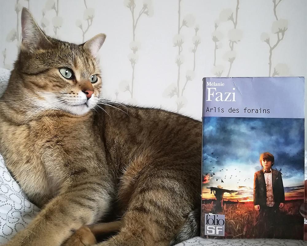 Cajou, un chat tigré à l'air féroce, est installé sur un lit. Un livre est appuyé à la verticale contre lui. La couverture montre un jeune garçon en costume formel, dans un champ, avec un épouvantail à l'arrière-plan.