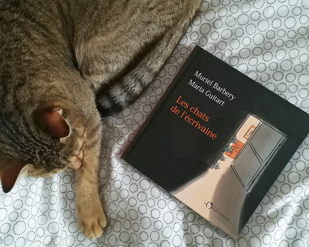 Cajou the cat, curled around a picture book.