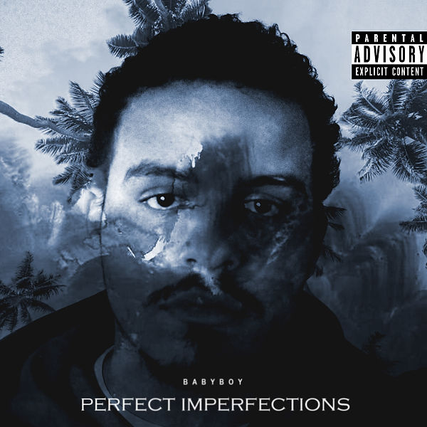 Perfect Imperfections Front Cove Art cop