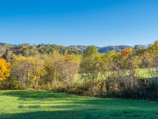 The Farm at Cane Creek