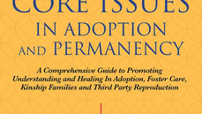 """Seven Core Issues In Adoption"" by NCAP members Sharon Kaplan Roszia and Allison Davis Maxon"