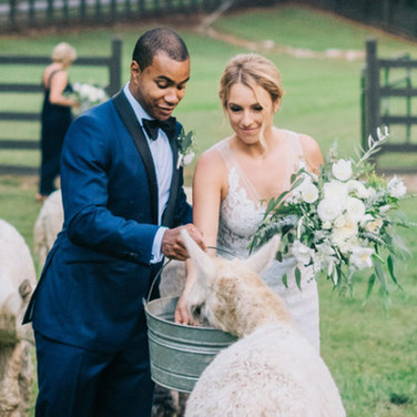 Hussman Wedding