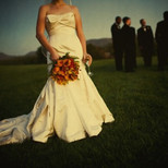 Bridal Bouquet Colorful