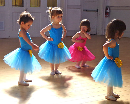 PRE BALLET (2-3) Saturday 9:30-10:00 ALMOST FULL!