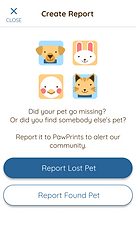Paw Prints Create Report Screen