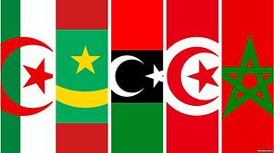 NAAB Ambulance Service LLC Maghreb.png