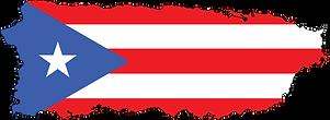 NAAB Ambulance Service Puerto Rico.png