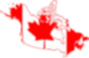 NAAB Ambulance Service Canada.png