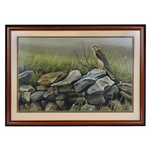 Andrew Ellis (British, b. 1971) Original Framed Acrylic Painting Bird of Prey